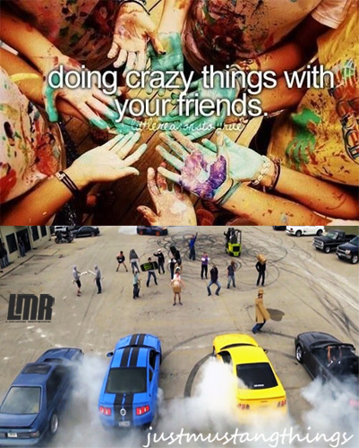 Just Mustang Things - Just Mustang Things 10